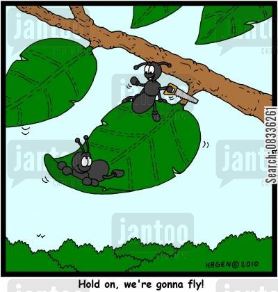 anthill cartoon humor: 'Hold on, we're gonna fly!'