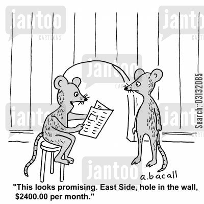 new home cartoon humor: This looks promising. East Side, hole in the wall, $2400.00 per month.