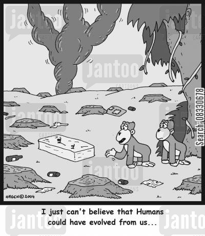 monkies cartoon humor: 'I just can't believe that Humans could have evolved from us...'