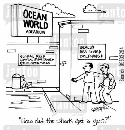 shark tanks cartoon humor: 'How did the shark get a gun?'