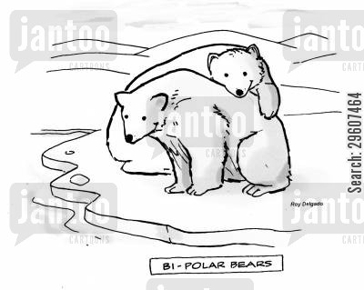 split personality cartoon humor: Bi-polar bears
