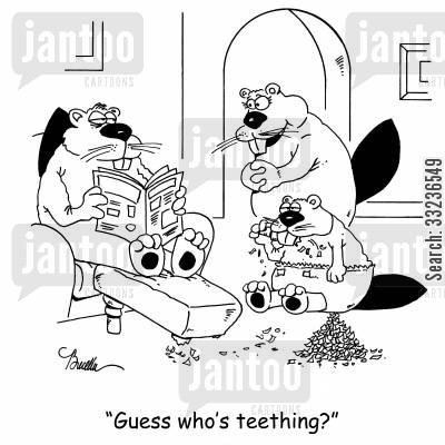 damns cartoon humor: 'Guess who's teething?'