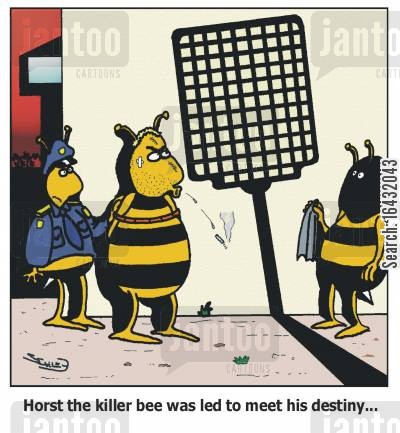 fly swat cartoon humor: Horst the killer bee was led to meet his destiny...