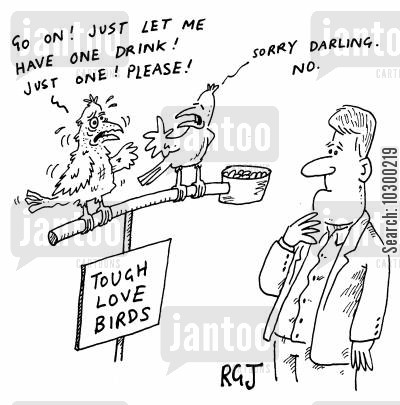 councelling cartoon humor: Tough Love Birds