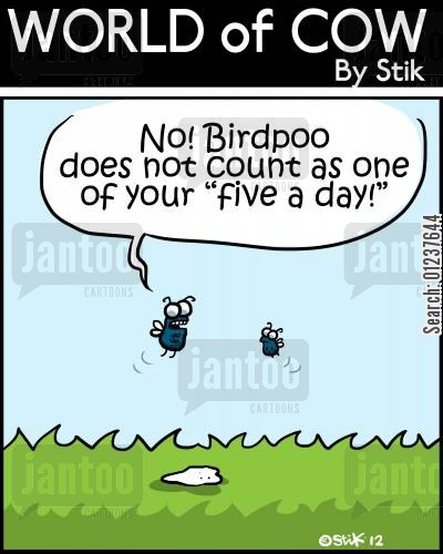 bird poo cartoon humor: 'No! Birdpoo does not count as one of your 'five a day!''