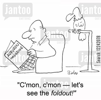 adult humor cartoon humor: 'C'mon, c'mon -- let's see the foldout!'