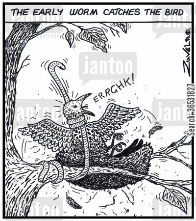 bird cartoon humor: The early worm catches the bird.