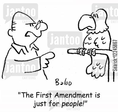parrot cartoon humor: 'The First Amendment is just for people!'