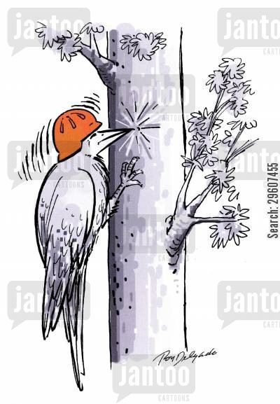 noisy cartoon humor: Woodpecker wearing hard hat.
