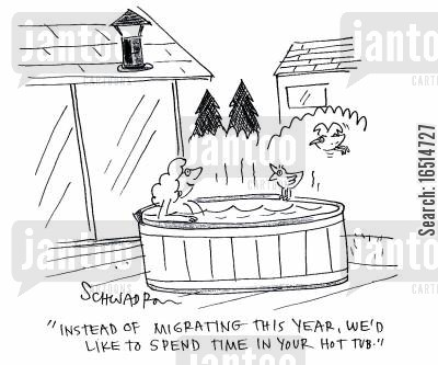 hot tub cartoon humor: 'Instead of migrating this year, we'd like to spend time in your hot tub.'