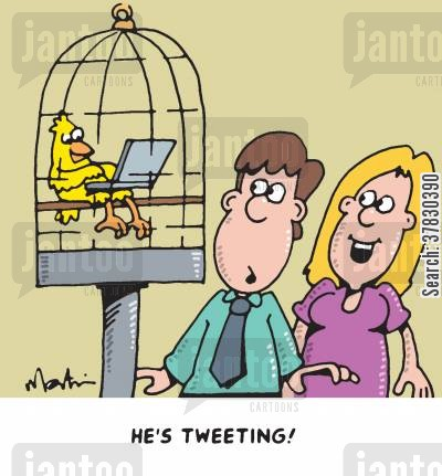 canary cartoon humor: 'He's tweeting!'