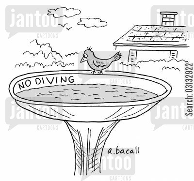 garden ornaments cartoon humor: Bird at Birdbath