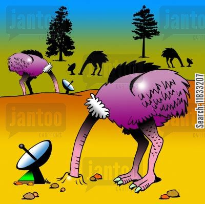 head in the sand cartoon humor: Ostrich TV.