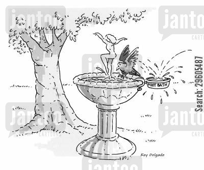 bird baths cartoon humor: Foot bath.