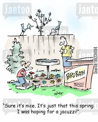 bird baths cartoon humor: Sure, it's nice. It was just this spring I was hoping for a jacuzzi!