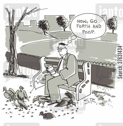 bird feed cartoon humor: 'Now, go forth and poop.'