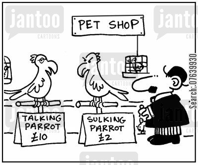 sulks cartoon humor: 'Talking parrot £10. Sulking parrot £2.'