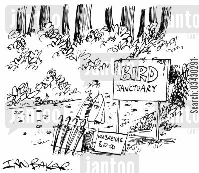 bird sanctuary cartoon humor: Bird Sanctuary.