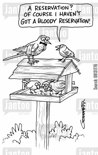 bird tables cartoon humor: 'A reservation? Of course I haven't got a bloody reservation!'