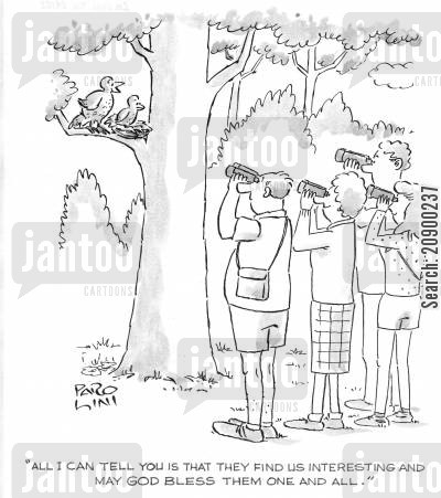 bird watchers cartoon humor: 'All I can tell you is that they find us interesting and may God bless them one and all.'