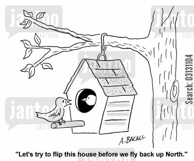 birdhouse cartoon humor: Let's try to flip this house before we fly back up North.