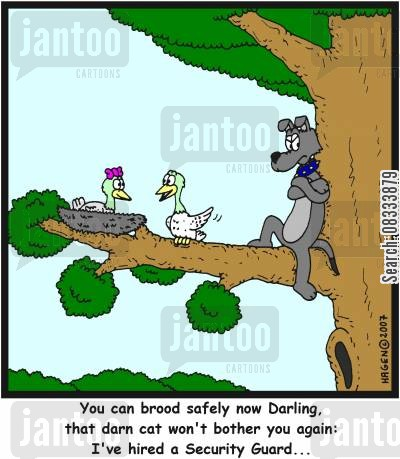 laid cartoon humor: 'You can brood safely now Darling, that darn cat won't bother you again: I've hired a Security Guard...'