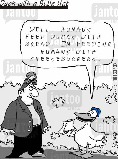 cheeseburger cartoon humor: 'Well, humans feed ducks with bread. I'm feeding humans with cheeseburgers.'