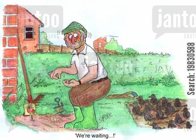planting seeds cartoon humor: 'We're waiting...!'