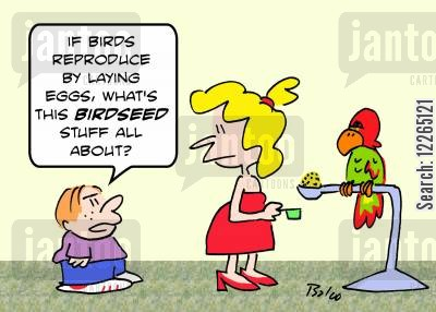 bird seed cartoon humor: 'If birds reproduce by laying eggs, what's this BIRDSEED stuff all about?'