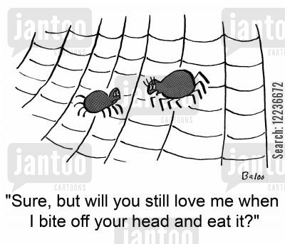black widows cartoon humor: 'Sure, but will you still love me when I bite off your head and eat it?'