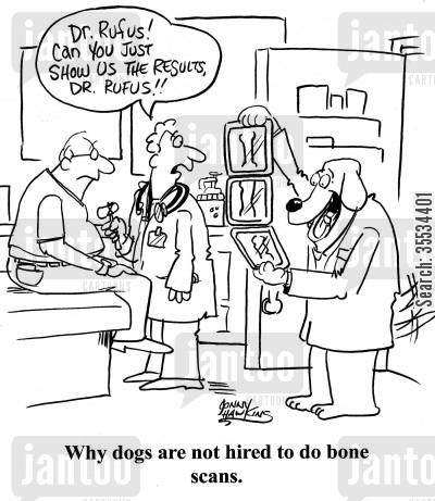 bone scans cartoon humor: Why dogs are not hired to do bone scans