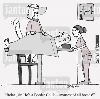 patient cartoon humor: 'Relax, sir. He's a Border Colie - smartest of all breeds!'