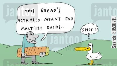 duck pond cartoon humor: 'This bread's actually meant for multiple ducks.'