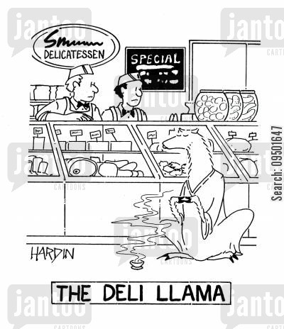 delicatessen cartoon humor: The Deli Llama