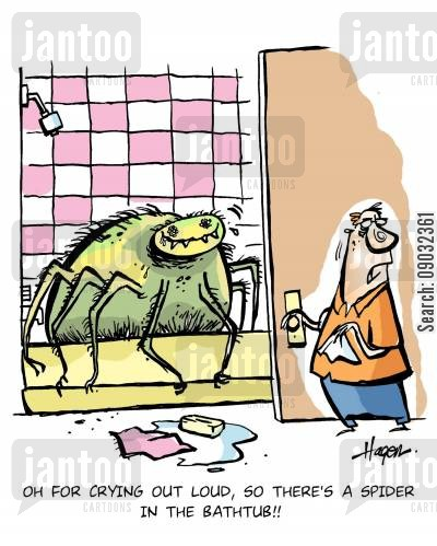 tubs cartoon humor: 'Oh for crying out loud, so there's a spider in the bathtub!!'