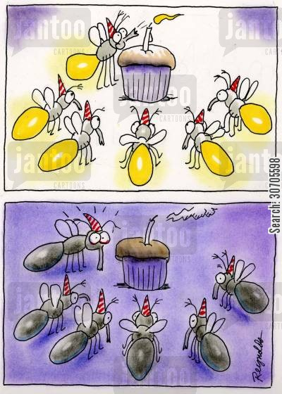 lightning bug cartoon humor: Fireflies Get Blown Out.