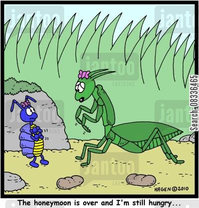 life cycles cartoon humor: 'The honeymoon is over and I'm still hungry...'