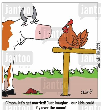 cow jumped over the moon cartoon humor: 'C'mon, let's get married! Just imagine - our kids could fly over the moon!'