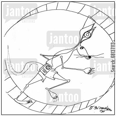 running wheel cartoon humor: In a cage wheel a rabbit runs while wearing a Running Rabbit radio.