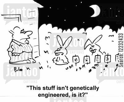 allotment cartoon humor: 'This stuff isn't genetically engineered, is it?'