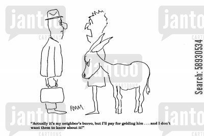 mule cartoon humor: 'Actually it's my neighbor's burro, but I'll pay for gelding him...I don't want them to know about it.