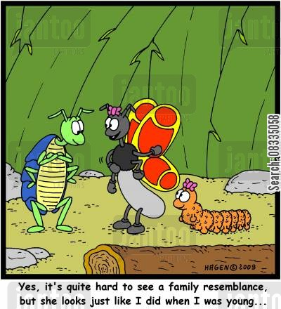 like mother like daughter cartoon humor: 'Yes, it's quite hard to see a family resemblance, but she looks just like I did when I was young...'