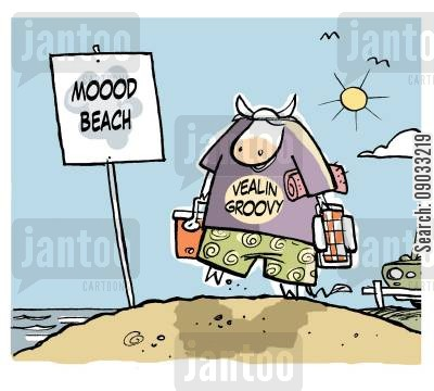 nude beach cartoon humor: Cow going to Moood Beach.