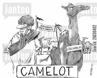 hump cartoon humor: 'Camelot' Hakeem's used camel lot.