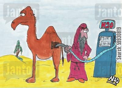 dehydrating cartoon humor: A guy fills up his camel with H2O in the desert.