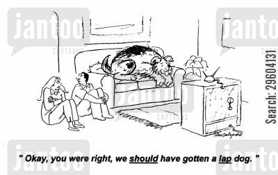 oversized cartoon humor: 'Okay, you were right, we should have gotten a lap dog.'