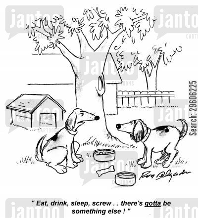 sleeper cartoon humor: 'Eat, drink, sleep, screw.. there's gotta be something else!'