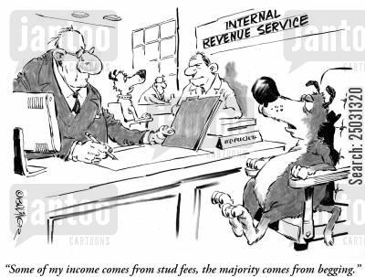 pet dog cartoon humor: 'Some of my income comes from stud fees, the majority comes from begging.'
