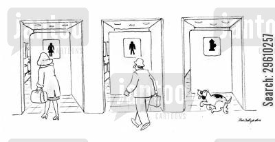 loo cartoon humor: Toilet for dogs.