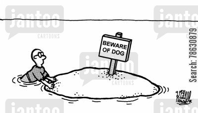 maroon cartoon humor: Beware of dog (sign on desert island)